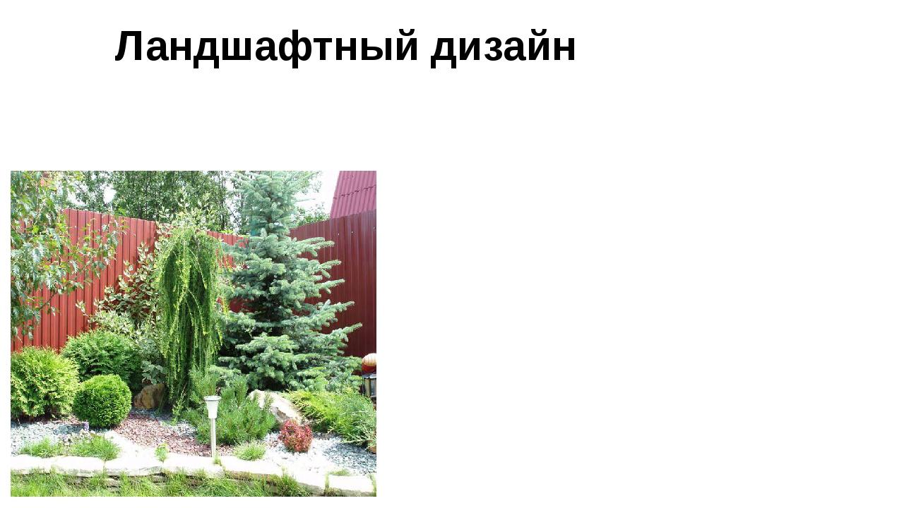 Ландшафтный дизайн Архитектура, строительство и проектирование (инженерный ас...