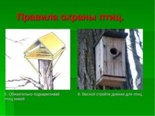 Правила охраны птиц. 5. Обязательно подкармливай птиц зимой. 6. Весной стройт