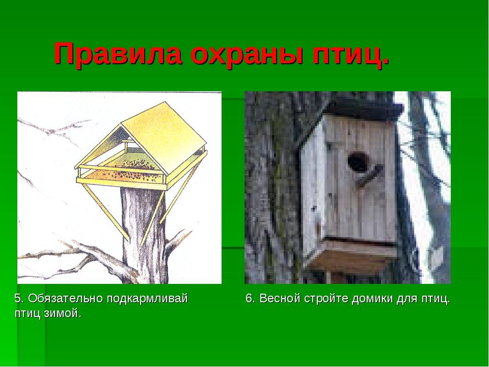 Правила охраны птиц. 5. Обязательно подкармливай птиц зимой. 6. Весной стройт...
