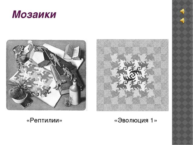 Мозаики «Рептилии» «Эволюция 1»