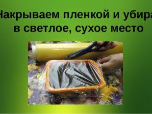 4. Накрываем пленкой и убираем в светлое, сухое место
