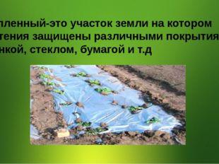 Утепленный-это участок земли на котором Растения защищены различными покрыти