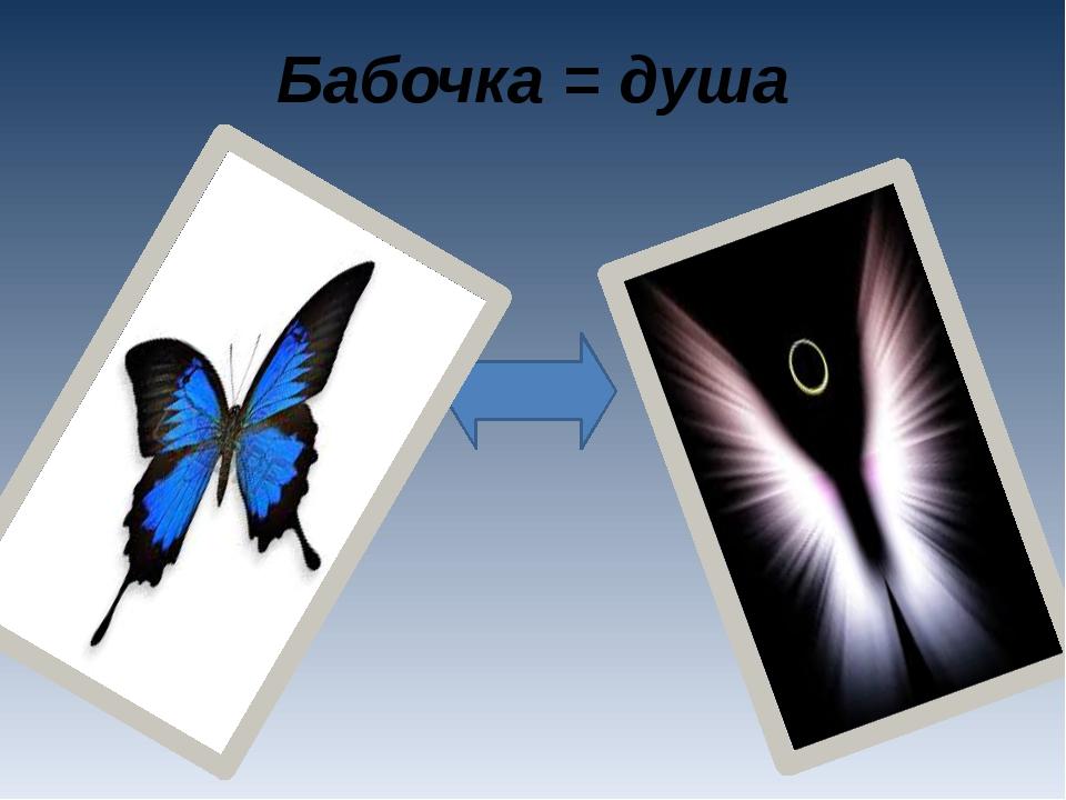 Бабочка = душа