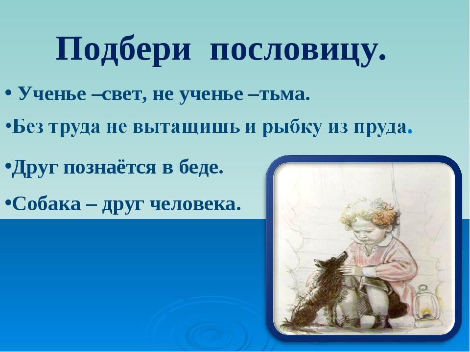 Ученье –свет, не ученье –тьма. Друг познаётся в беде. Собака – друг человека...