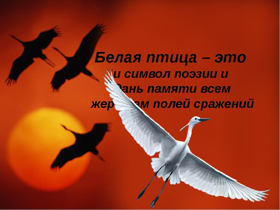 Белая птица – это и символ поэзии и дань памяти всем жертвам полей сражений