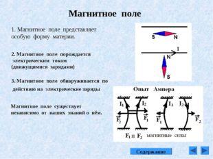 Магнитное поле 1. Магнитное поле представляет особую форму материи. 2. Магнит