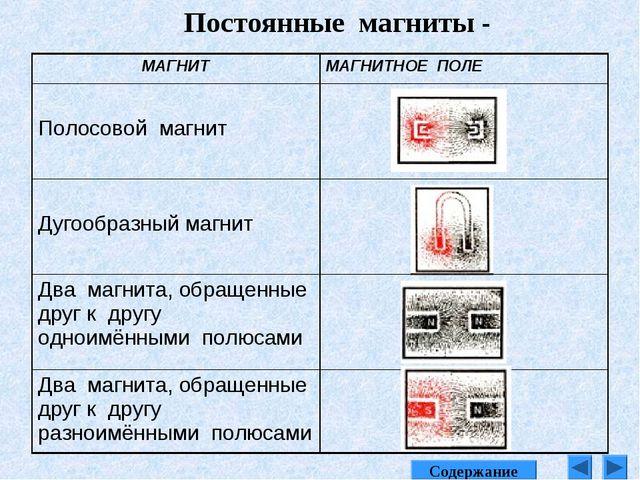Постоянные магниты - Содержание МАГНИТМАГНИТНОЕ ПОЛЕ Полосовой магнит Дугоо...