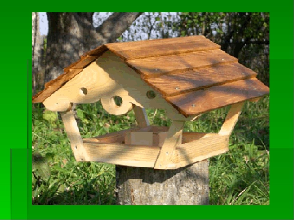 Фото кормушки для птиц из дерева