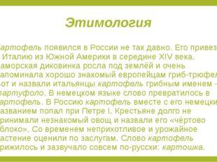 Этимология Картофель появился в России не так давно. Его привезли в Италию из