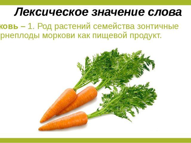 Морковь – 1. Род растений семейства зонтичные 2. Корнеплоды моркови как пищев...