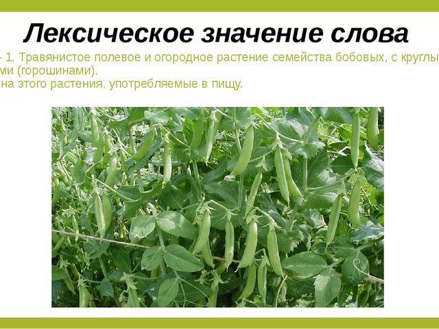 Горох – 1. Травянистое полевое и огородное растение семейства бобовых, с круг...