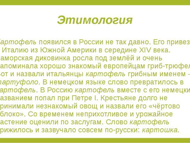 Этимология Картофель появился в России не так давно. Его привезли в Италию из...