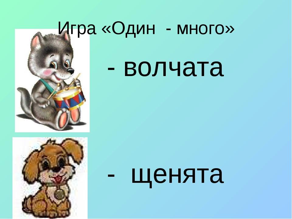 Игра «Один - много» - волчата - щенята