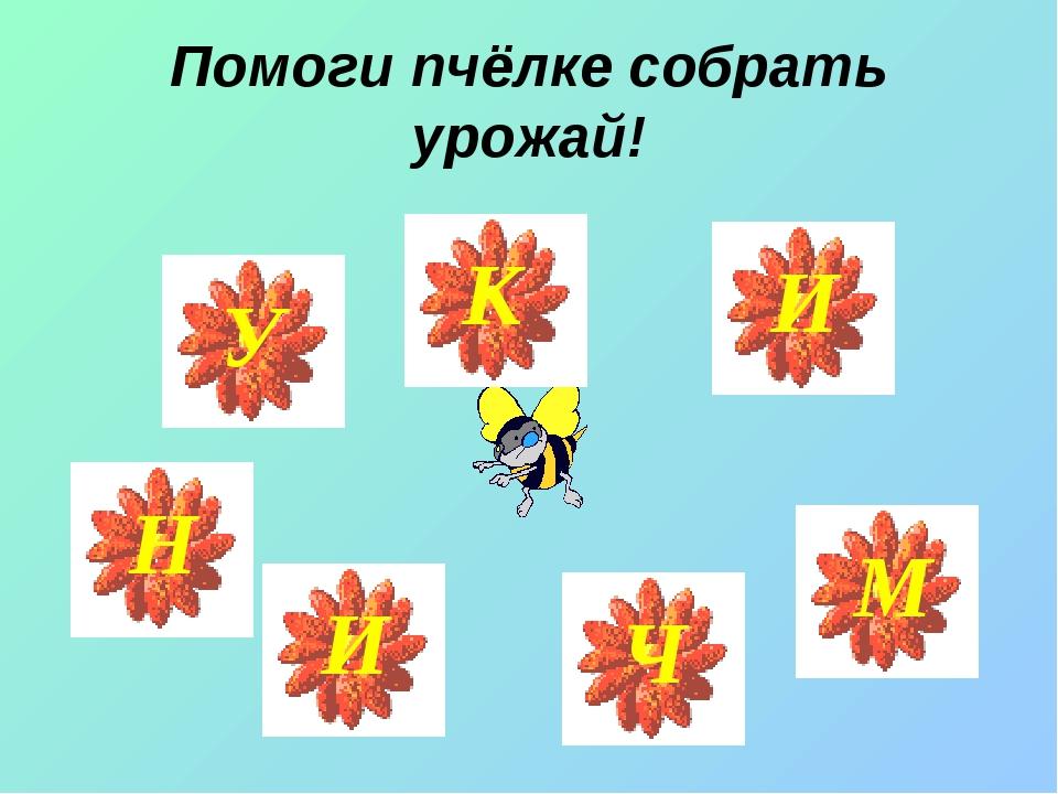 Помоги пчёлке собрать урожай!