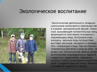 Экологическое воспитание Экологическая деятельность младших школьников органи