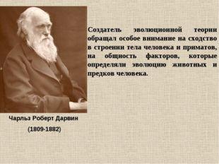 Чарльз Роберт Дарвин (1809-1882) Создатель эволюционной теории обращал особое