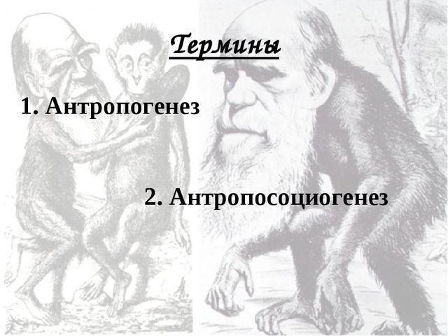 Термины 1. Антропогенез 2. Антропосоциогенез