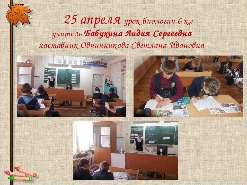 25 апреля урок биологии 6 кл учитель Бабухина Лидия Сергеевна наставник Овчи...