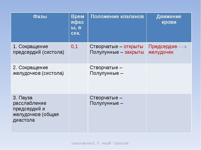 """Шишловская Е. Л., лицей """"Серпухов"""" ФазыВремяфазы, в сек.Положение клапанов..."""