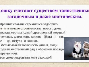 Кошку считают существом таинственным, загадочным и даже мистическим. Древние