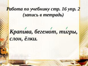 Работа по учебнику стр. 16 упр. 2 (запись в тетрадь) Крапива, бегемот, тигры,