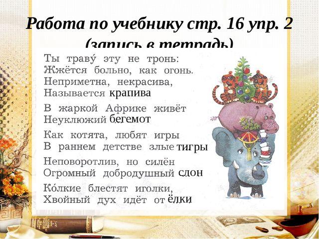Работа по учебнику стр. 16 упр. 2 (запись в тетрадь) крапива бегемот тигры сл...