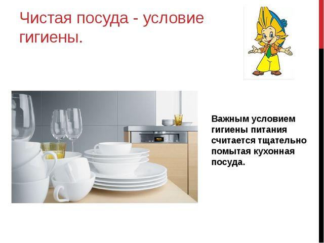 Чистая посуда - условие гигиены. Важным условием гигиены питания считается тщ...