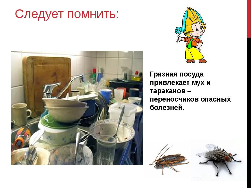 Следует помнить: Грязная посуда привлекает мух и тараканов – переносчиков опа...