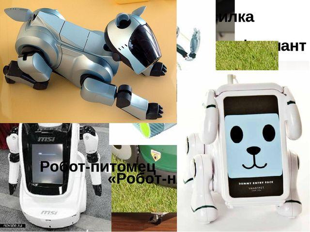«Робот-мойщик окон» «Робот-пылесос» Робот-официант Робот-газонокосилка «Робо...