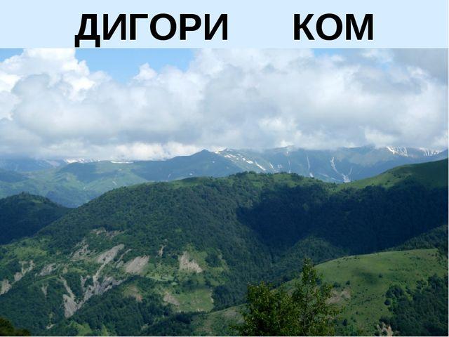 ДИГОРИ КОМ