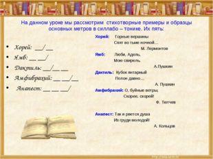 На данном уроке мы рассмотрим стихотворные примеры и образцы основных метров