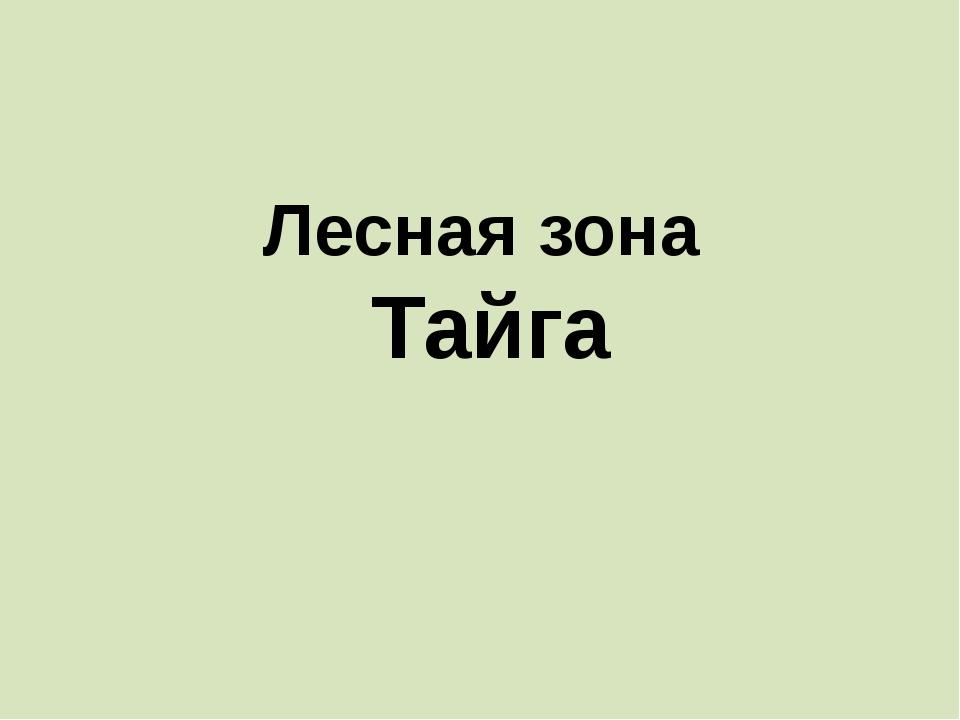 Лесная зона Тайга