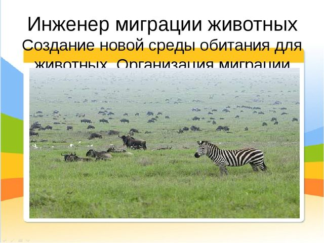 Инженер миграции животных Создание новой среды обитания для животных. Организ...