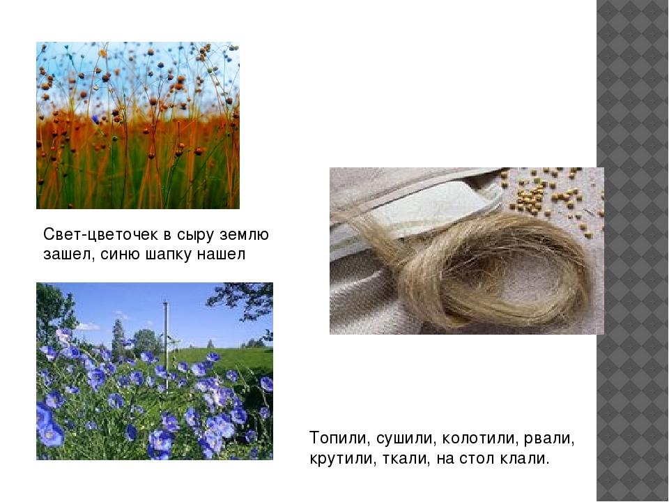 Топили, сушили, колотили, рвали, крутили, ткали, на стол клали. Свет-цветочек...