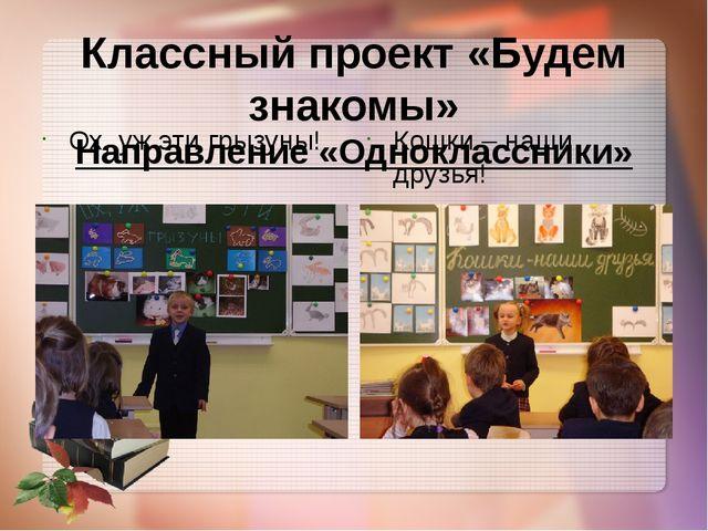 Классный проект «Будем знакомы» Направление «Одноклассники» Ох, уж эти грызун...