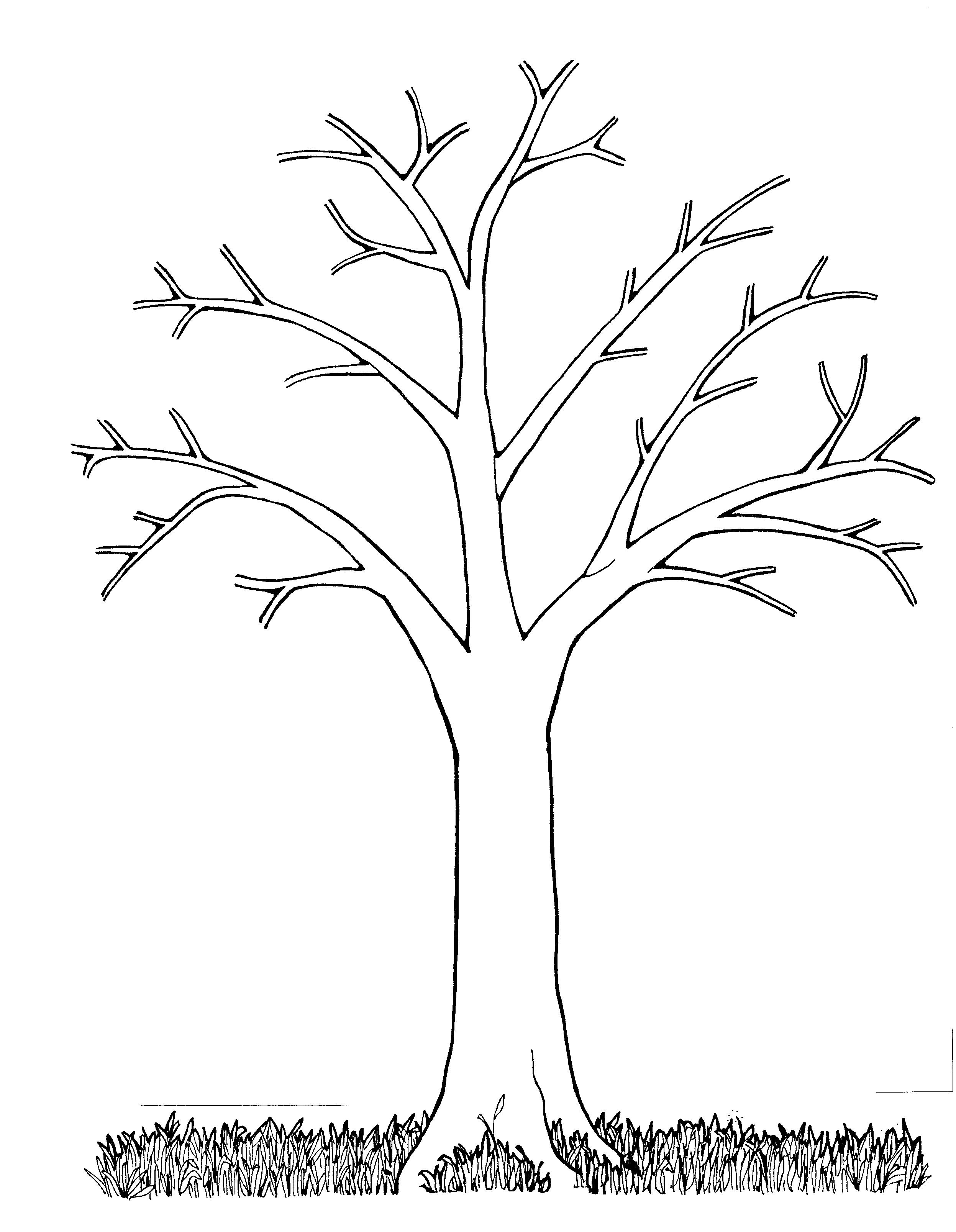 Раскраски распечатать деревья