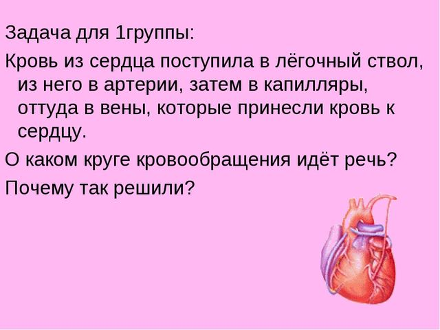 Задача для 1группы: Кровь из сердца поступила в лёгочный ствол, из него в арт...