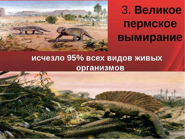 3. Великое пермское вымирание исчезло 95% всех видов живых организмов