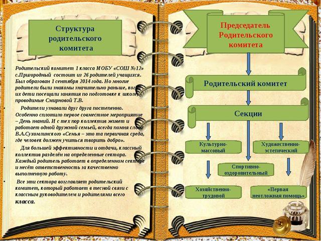 Родительский комитет 1 класса МОБУ «СОШ №12» с.Пригородный состоит из 26 род...