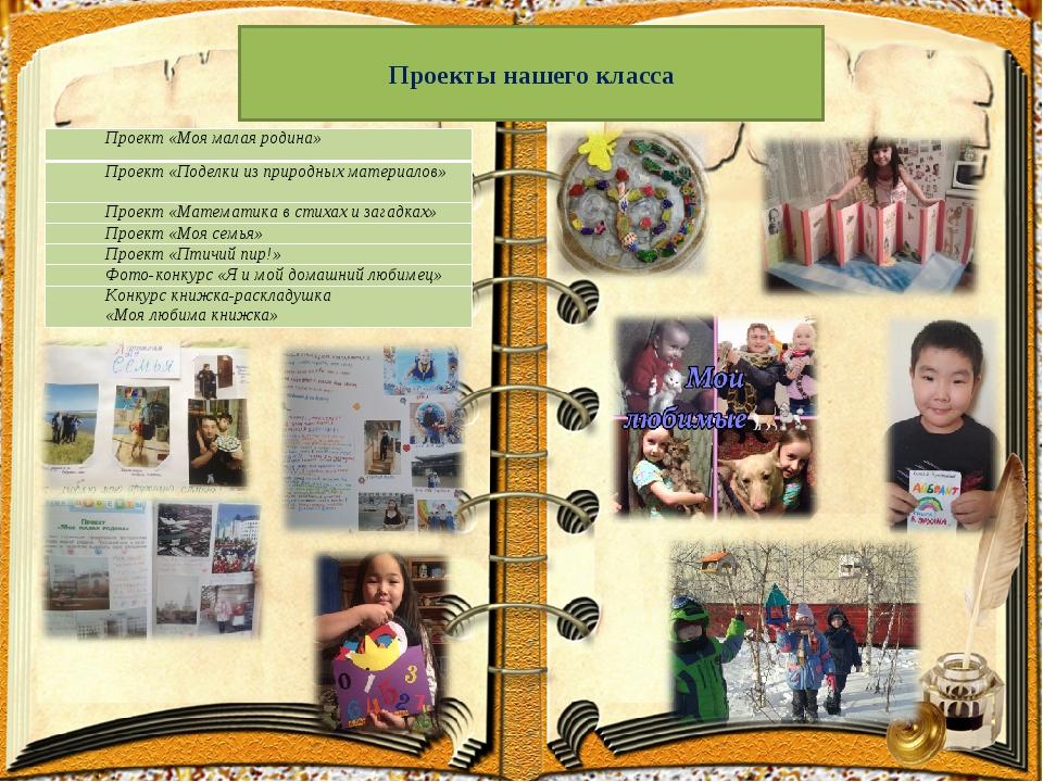 Проекты нашего класса Проект «Моя малая родина» Проект «Поделки из природных...