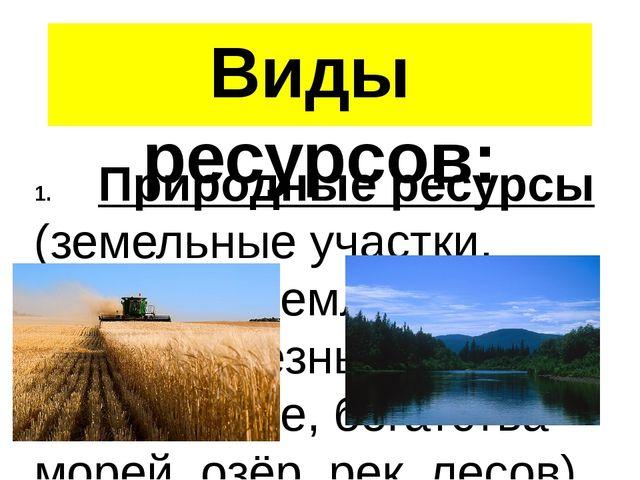 Виды ресурсов: Природные ресурсы (земельные участки, пахотные земли, леса, во...