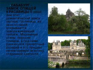 САБАБУРГ - ЗАМОК СПЯЩЕЙ КРАСАВИЦЫВ наши дни этот романтический замок - уютн