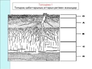 Тапсырма 1 Топырақ қабаттарының аттарын ретімен жазыңдар