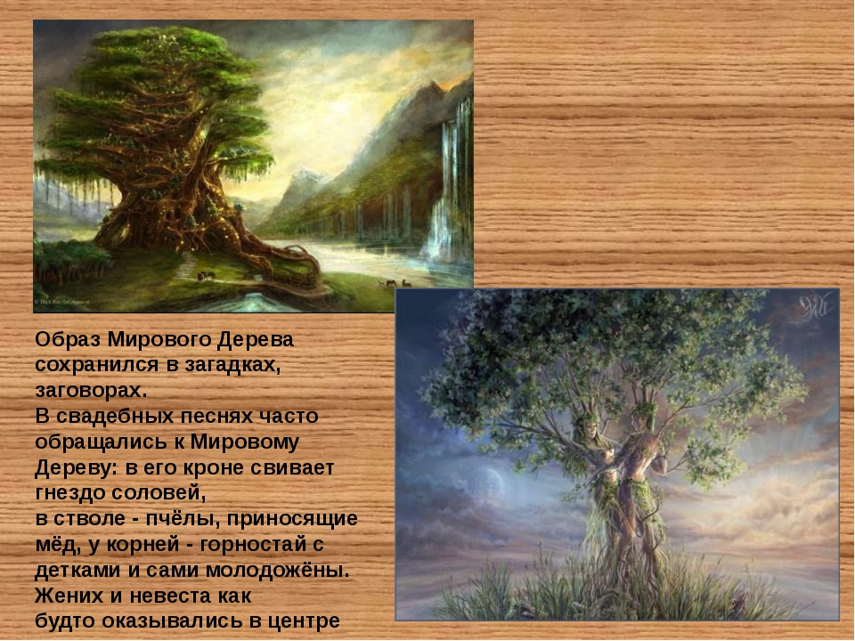 Образ Мирового Дерева сохранился в загадках, заговорах. В свадебных песнях ча...