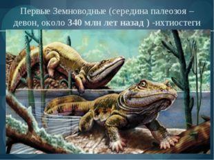 Первые Земноводные (середина палеозоя –девон, около 340 млн лет назад ) -ихти