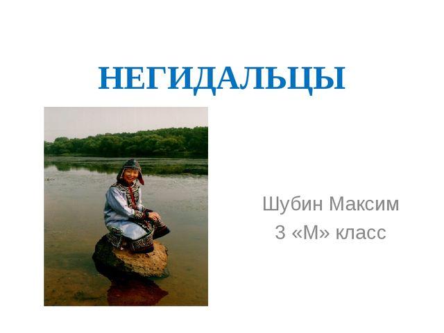 НЕГИДАЛЬЦЫ Шубин Максим 3 «М» класс