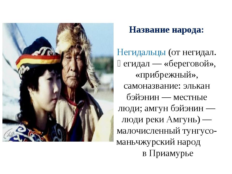 Название народа: Негидальцы (от негидал. ңегидал — «береговой», «прибрежный»,...