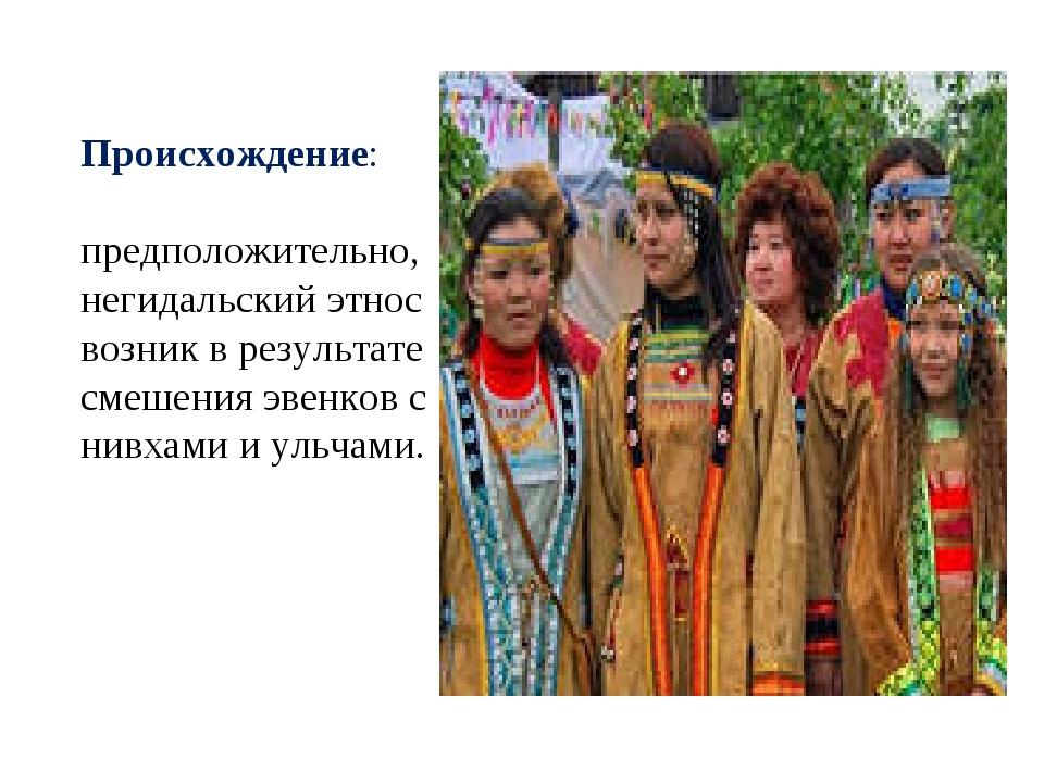Происхождение: предположительно, негидальский этнос возник в результате смеше...