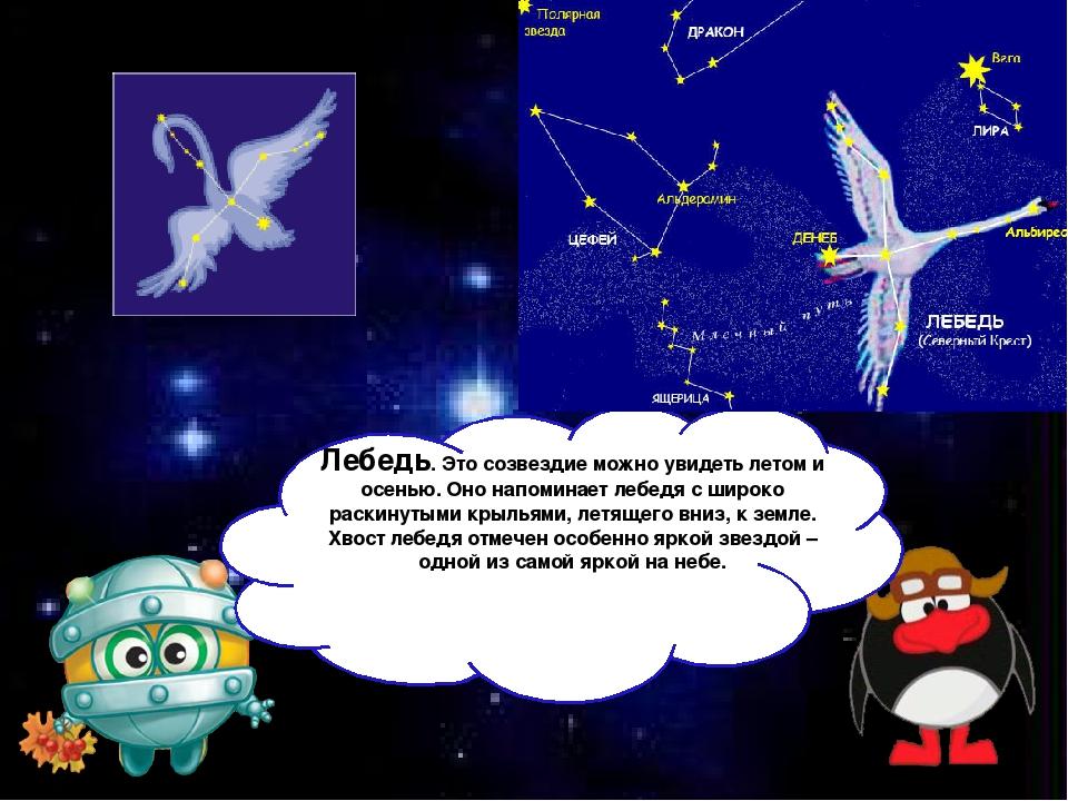 Лебедь. Это созвездие можно увидеть летом и осенью. Оно напоминает лебедя с...