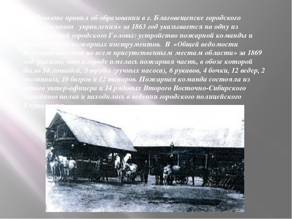 В «Проекте правил об образовании в г. Благовещенске городского общественного...
